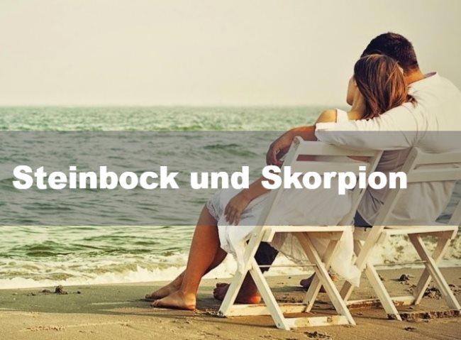 Steinbock und Skorpion: Partnerschaft, Freundschaft und Liebe