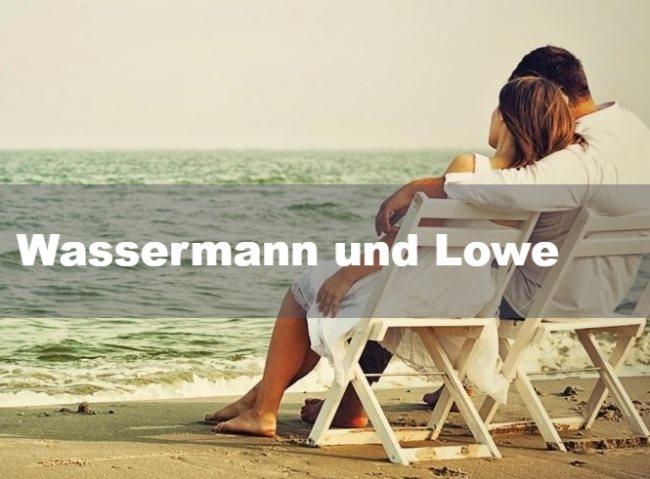 Wassermann und Löwe: Partnerschaft, Freundschaft und Liebe