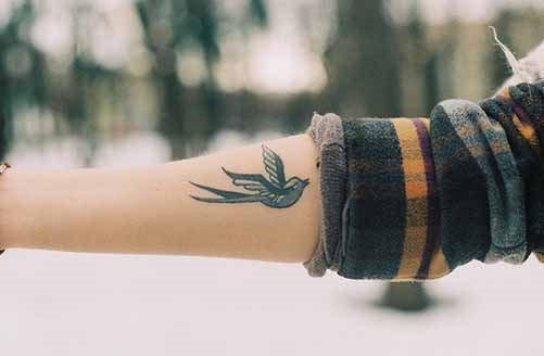 weibliche schwalben tattoos  bilder
