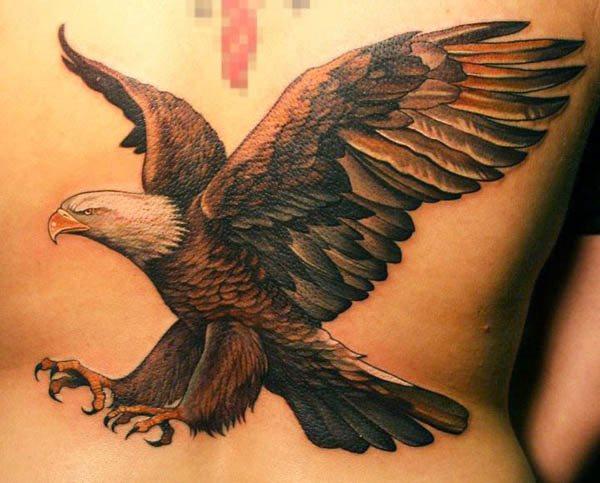 Vogel Tattoo Fur Frauen Und Manner 50 Ideen