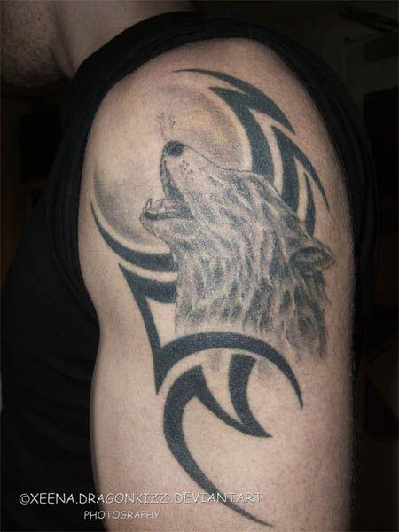 wild wolf tattoos  bilder und fotos