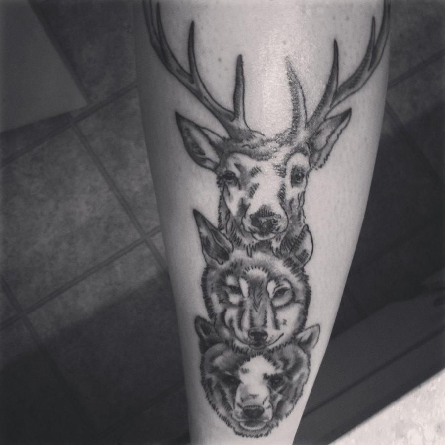 Tattoo motiv wolf tattoovorlage wolfskopf - Wolf Tattoo 32 Hirsch Wolf Hund