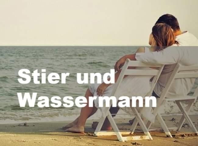 Stier und Wassermann: Partnerschaft, Freundschaft und Liebe