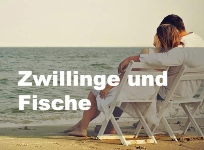 √ Sternzeichen Fisch Zwilling | Fischlexikon