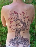 baum tattoo 11