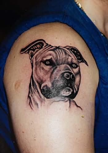 200 Dibujos Y Tatuajes De Perros Y Sus Huellas