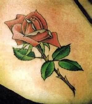 Tatuajes Espléndidos De Rosas 140 Tatuajes Florales