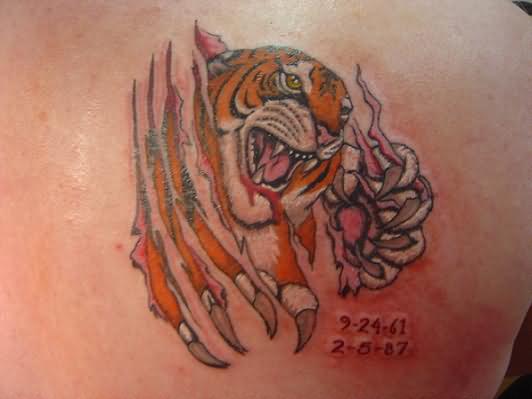 109 Tatuajes De Jaguares Y Tigres Diseños Perfectos