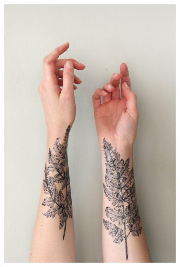 Galería 55 Tatuajes De árboles Frondosos