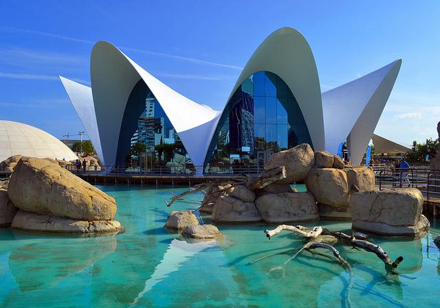 Los acuarios m s impresionantes del mundo for Acuario valencia precio