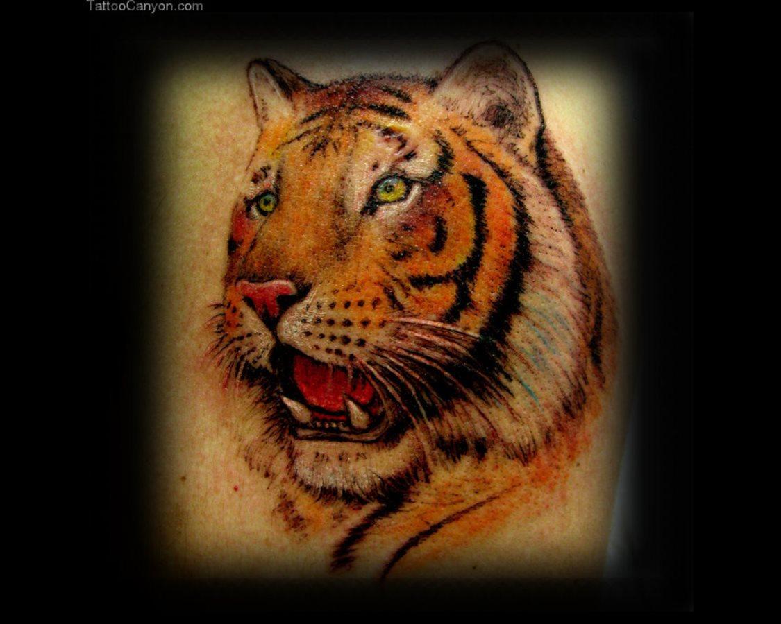 47 disegni con tatuaggi di tigri for Disegni delle tigri
